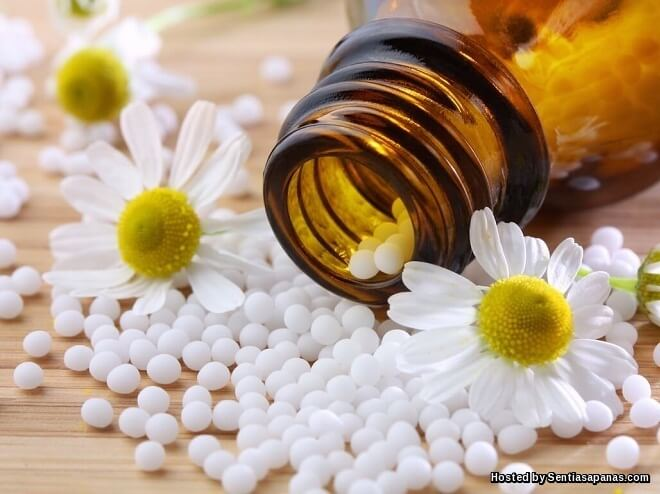 Sejarah Perubatan Homeopati Dan Keajaiban Herba Melawan Penyakit Berbahaya