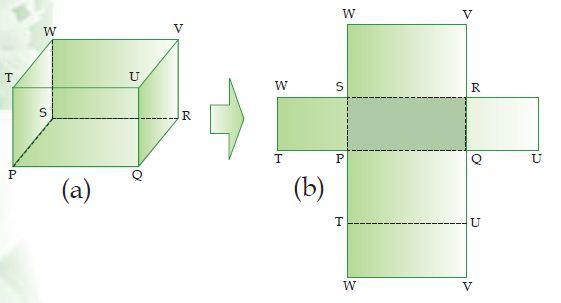 Soal Matematika Kelas 5 KD 3.6 Jaring-Jaring Kubus dan Balok