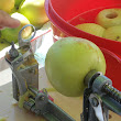 Apples Apples Everywhere - Canning Chunky Homemade Applesauce | Cooking With Crazies: Kitchen Adventures, Recipes & Tools