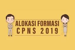 Formasi Penerimaan Calon Pegawai Negeri Sipil (CPNS) tahun 2019