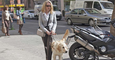 Fotografía de una persona ciega con su perro guía