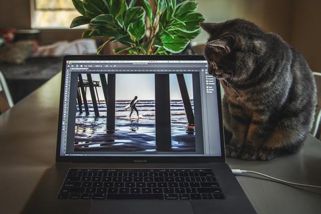 أهم 6 أشياء يجب البحث عنها في أجهزة الكمبيوتر المحمولة لتعديل الفيديو