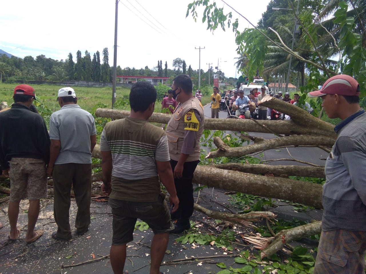 Warga Bersama Bersihkan Pohon Tumbang