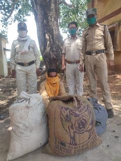 मादक पदार्थ गांजा के व्यापार मे लिप्त आरोपी पुलिस गिरफ्त में,  21 किलो 200 ग्राम गांजा जप्त