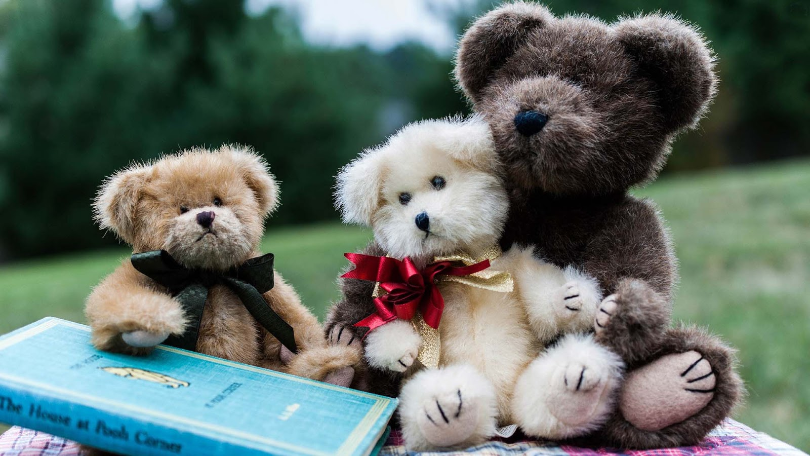 Lovely And Beautiful Teddy Bear Wallpapers Free Love