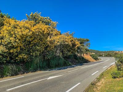 carbon road bike rental in Roquebrune sur Agens French Riviera Frejus Saint Tropez Estérel Massif Provence Col du Bougnon
