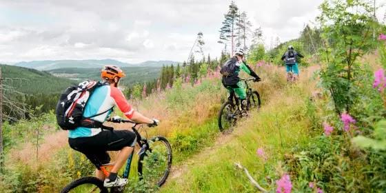 Las excursiones en bici