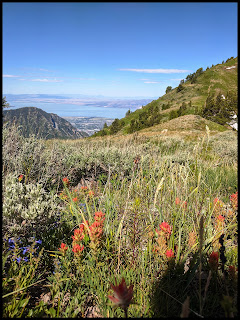 Utah Lake and North side of Provo Mountain from Cascade saddle.