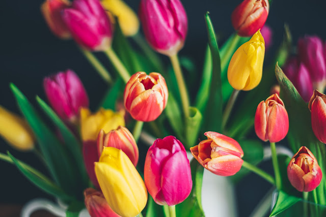 tulips Photo by Libby Penner on Unsplash