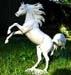 http://1.bp.blogspot.com/-QS1_wpPE_pg/U9_fM4-XrNI/AAAAAAAAGzs/EU4w62lu7zs/s1600/rabi+tr.jpg