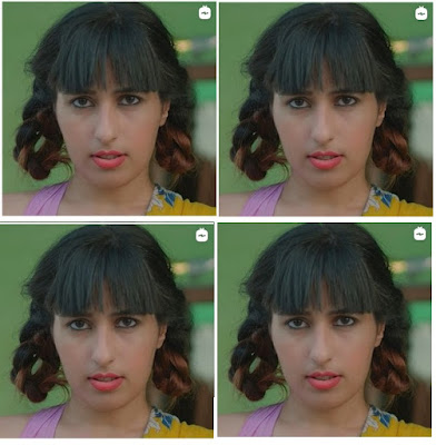 Suno Sahebji web series actress