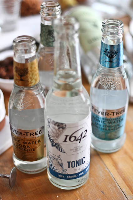 tonic,eau-toique,tonic-1642,fever-tree,madame-gin,diy,comment