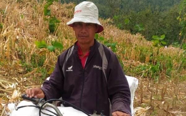 Pak Guru Honorer K2, Usai Mengajar Cari Kayu Bakar untuk Dijual