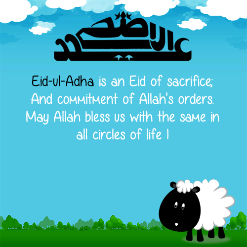 Top Best Eid al Adha WhatsApp Messages 2017