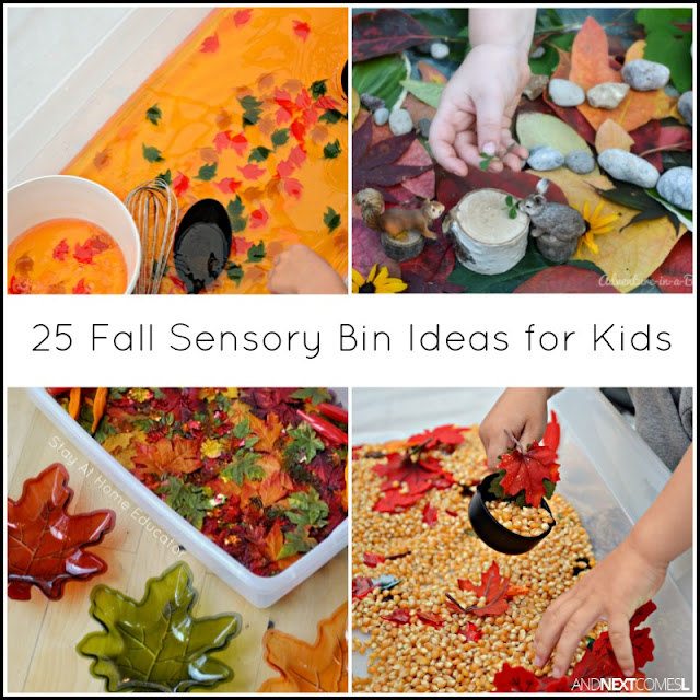 Fall sensory bin ideas for kids from And Next Comes L