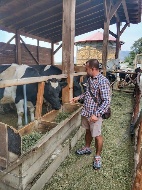 мнемонте, лучший гид в черногории, черногория экскурсия с гидом