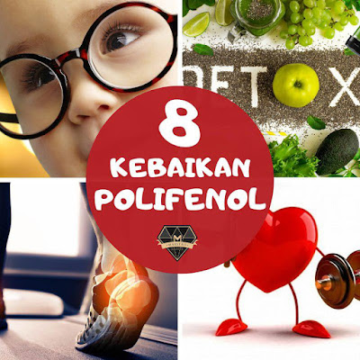 Polifenol, Kebaikan Polifenol, Produk shaklee yang ada polifenol, ResV shaklee, ResV, ResV ada polifenol, Fungsi polifenol dalam ResV, fungsi polifenol dalam vivix shaklee, vivix shaklee, vivix, pengedar shaklee , pengedar resv shaklee, pengedar resv shaklee paka, pengedar resv ketengah jaya, pengedar vivix ketengah jaya, polyphenols foods polyphenols classification polyphenols in tea polyphenols in wine apple polyphenol benefits polyphenol pronunciation jual polifenol tanin adalah fenolik adalah flavonoid adalah saponin adalah alkaloid adalah gugus fenol katekin antosianin antioksidan adalah flavonoid polifenol pdf polyphenols weight loss characteristics of polyphenols polyphenols and flavonoids polyphenols pdf polyphenol consumption polyphenols brain health polyphenols in legumes polyphenols review polifenol adalah  polifenol flavonoid polifenol adalah pdf jual polifenol polifenol dalam vivix  polyphenol polyphenols antioxidants polyphenols supplements manfaat polifenol terhadap kesihatan
