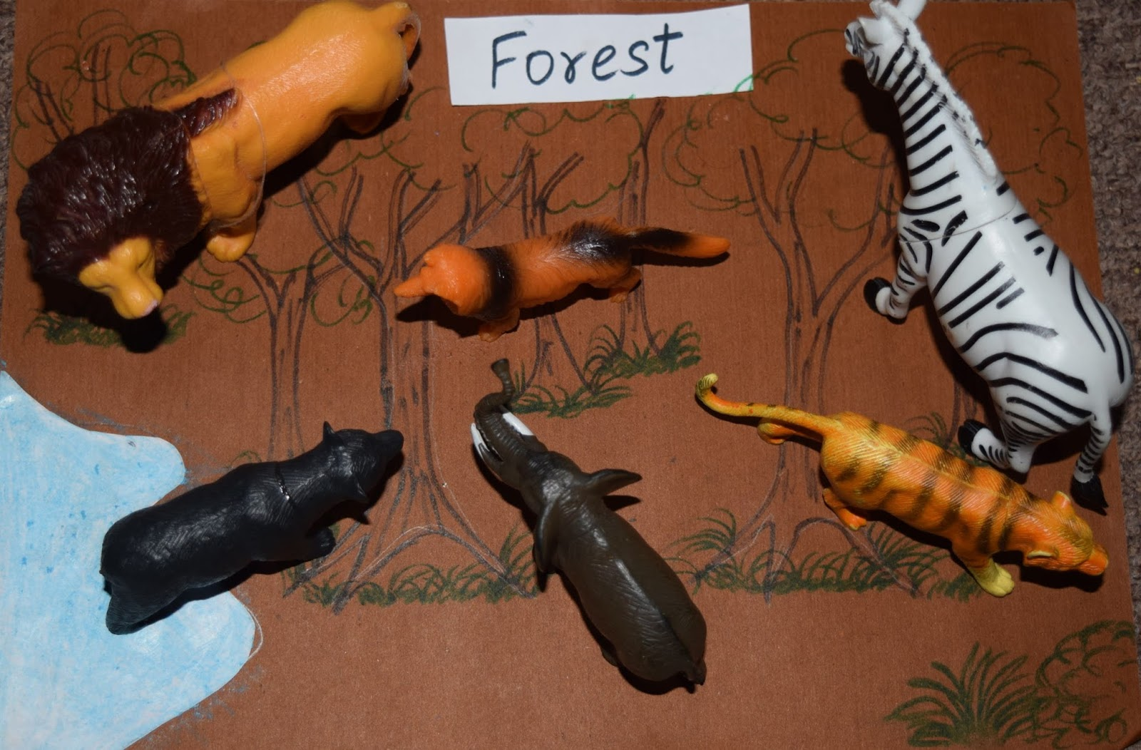 Sindhu's cocoon: Animals and Habitats - Sorting activity for Pre-Schoolers