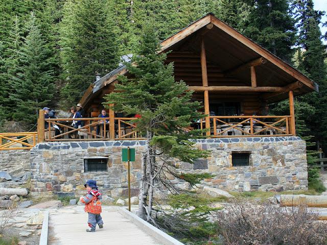 lake agnes tea house open - 800×600