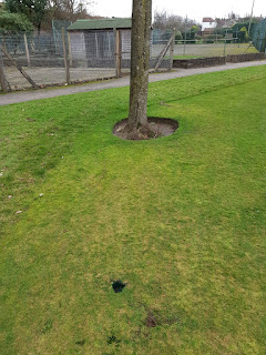 Putting Green at Vickersway Park in Northwich