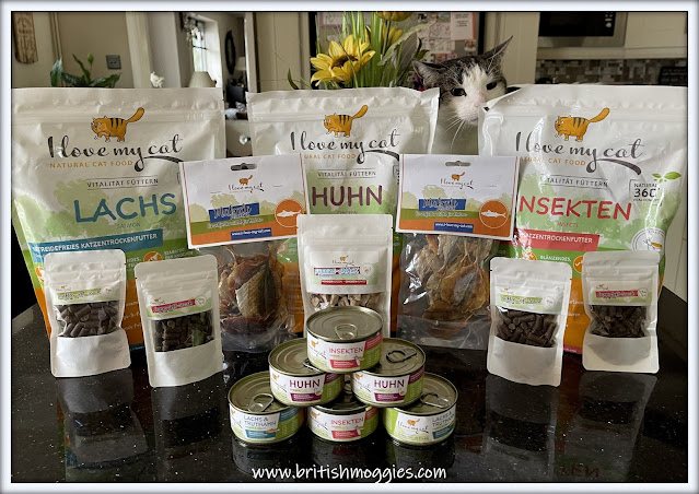 I love my cat natural cat food, melyn checking our all the cat food packages, tabby cat, cat food, cat treats