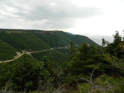 Windswept Lookout at Skyline Trail Cape Breton Highlands National Park by garden muses-not another Toronto gardening blog