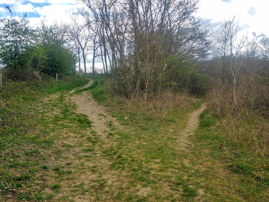 The fork on Weston bridleway 38 mentioned in point 8 below