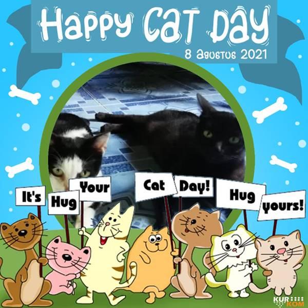 Happy International Cat Day