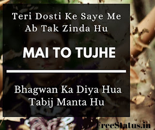 Teri-Dosti-Ke-Saye-Me-Dosti-Shayari-In-Hindi
