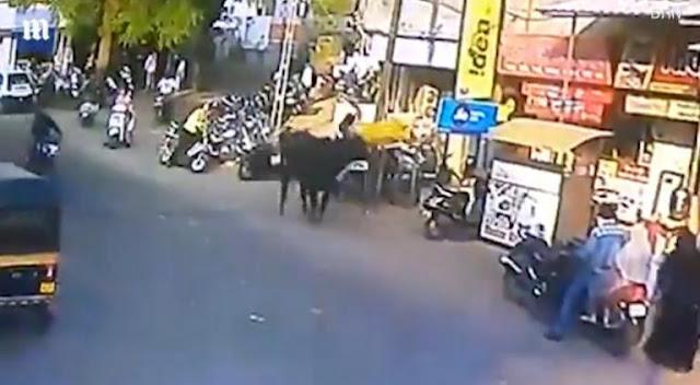 Περπατούσε αμέριμνη και την πέταξε μαινόμενος ταύρος στον αέρα (βίντεο)