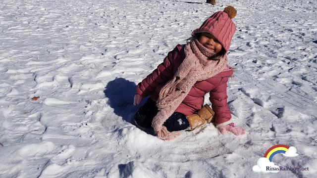 Nami Island Snow