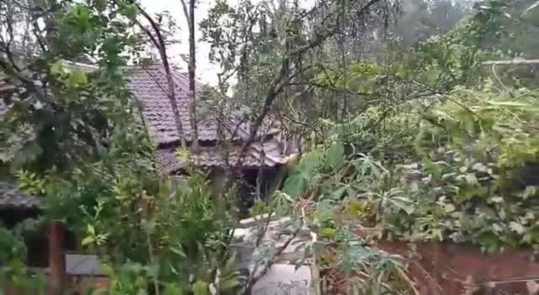 Tebing Longsor Di Cianjur Selatan, Dua Orang Tertimbun