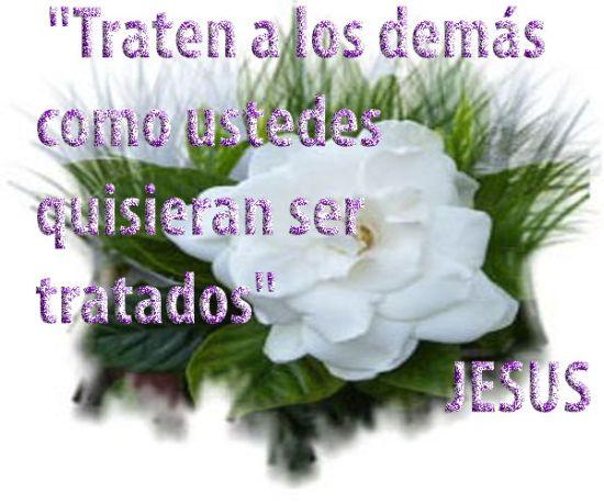 Soñar La Vida Frases De Jesús De Nazaret