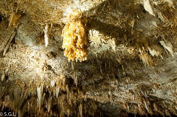 Techo de Cueva Pozalagua con estalactitas excentricas