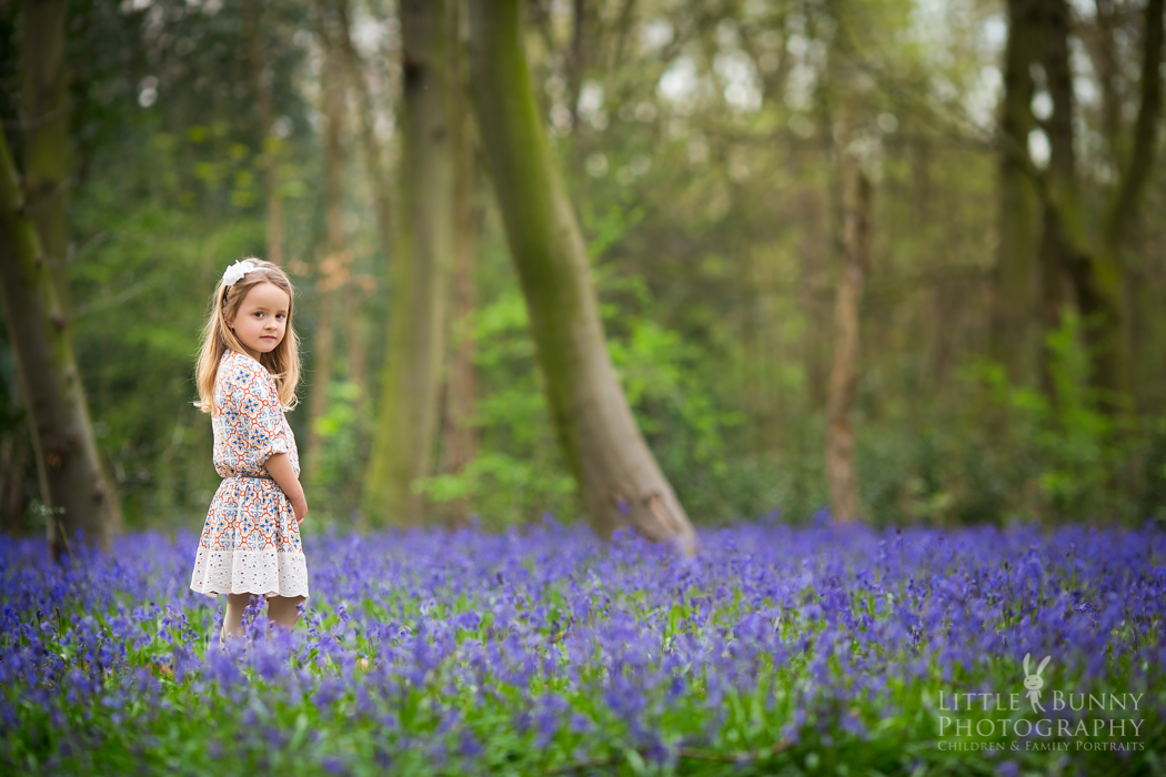Bluebell mini photo sessions in London