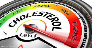 benefits of cholesterol
