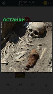 в земле лежат останки скелета и череп человека