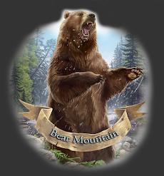 Bear Mountain Books