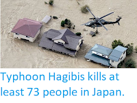 https://sciencythoughts.blogspot.com/2019/10/typhoon-hagibis-kills-at-least-73.html