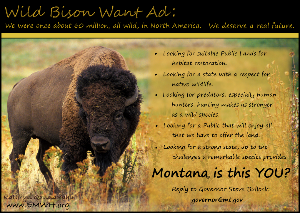 http://www.emwh.org/postcards/bison%20want%20ad.png