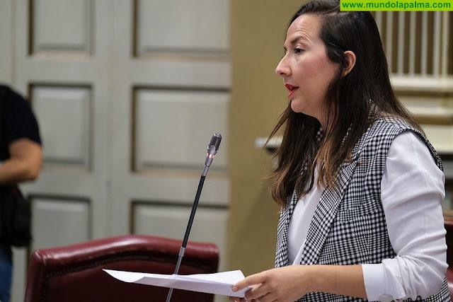"""Hernández Labrador: """"La Palma es la gran perjudicada de los Presupuestos, con 7 millones de euros menos que en 2019"""""""