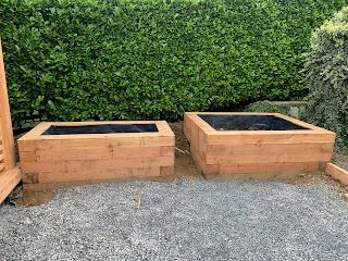 Larch raised planters