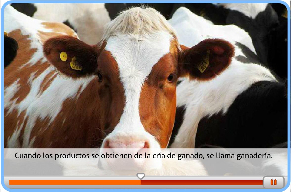 http://www.primerodecarlos.com/TERCERO_PRIMARIA/abril/Unidad10/cono/actividades/trabajos_y_productos_naturales/cono4001.swf