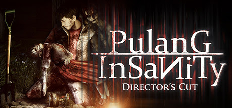 pulang-insanity-directors-cut-pc-cover