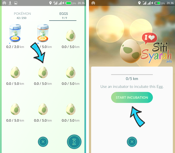 menetaskan pokemon egg android