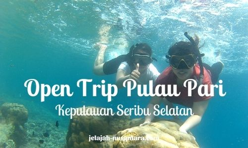 paket open trip pulau pari