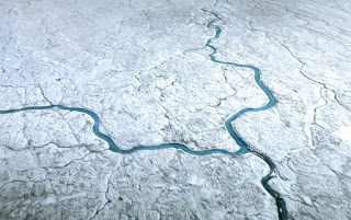 greenland, greenland ice sheet, algae and ice sheets