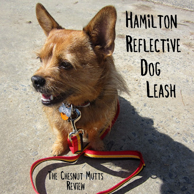 Hamilton Reflective Dog Leash. The Chesnut Mutts Review