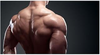 whey protein, suplementi prodaja, kreatin, kreatin za masu