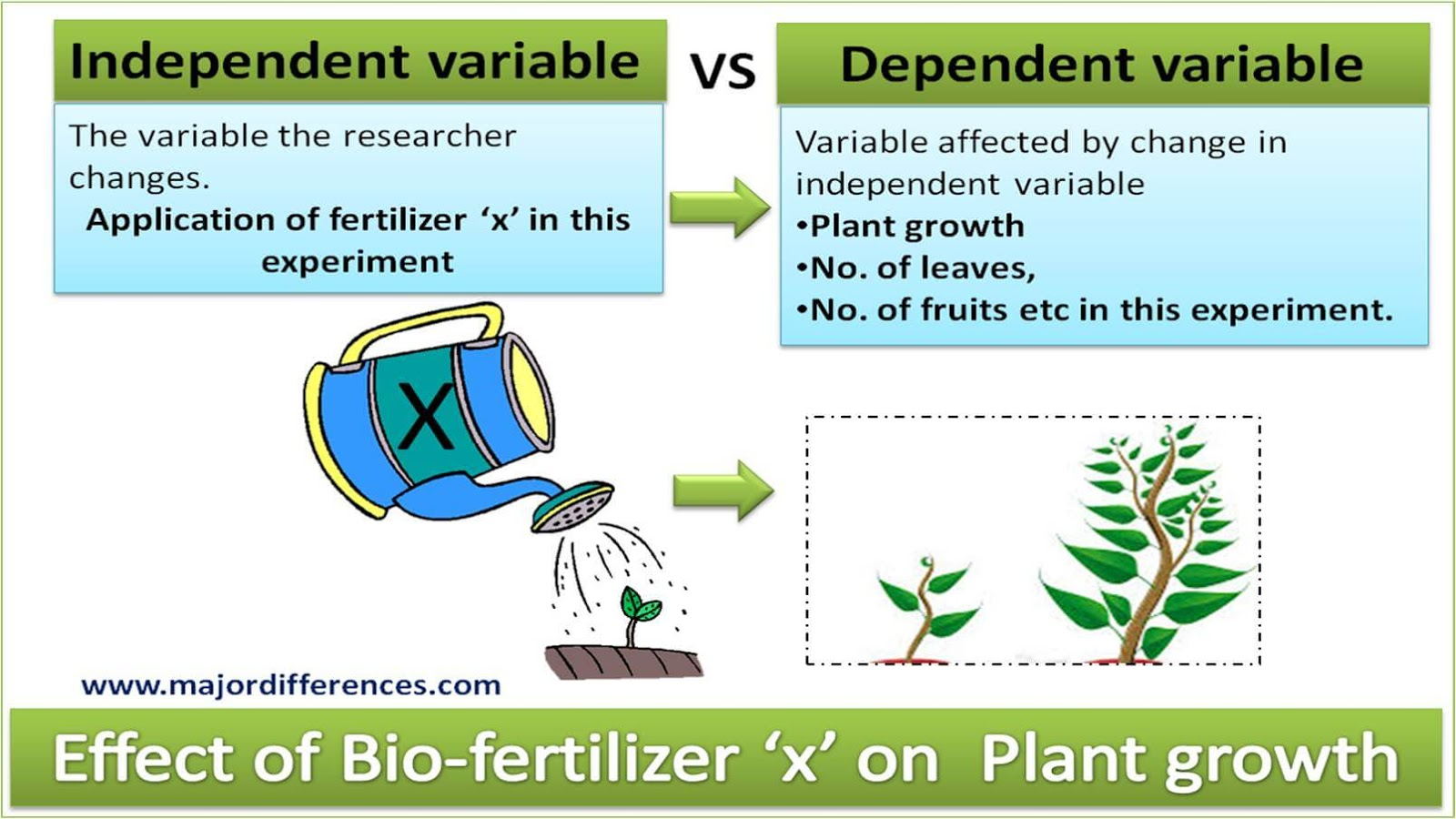 5 Differences Between Independent Variable And Dependent